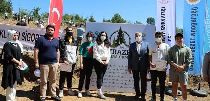 """Beykoz'da """"Hoş Geldin Bebek Ormanı"""" Kuruldu"""